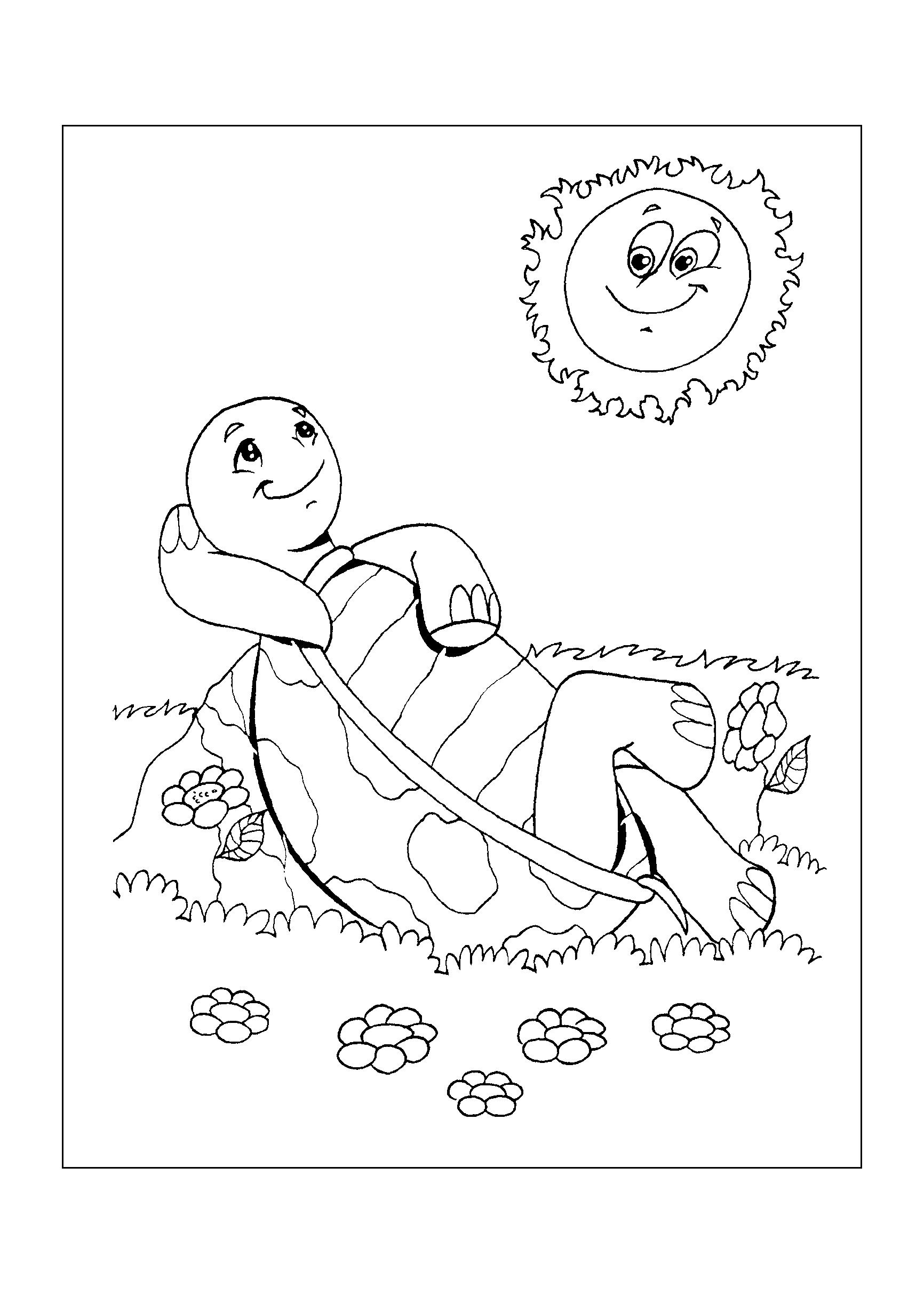 0165-desenho-colorir-tartaruga