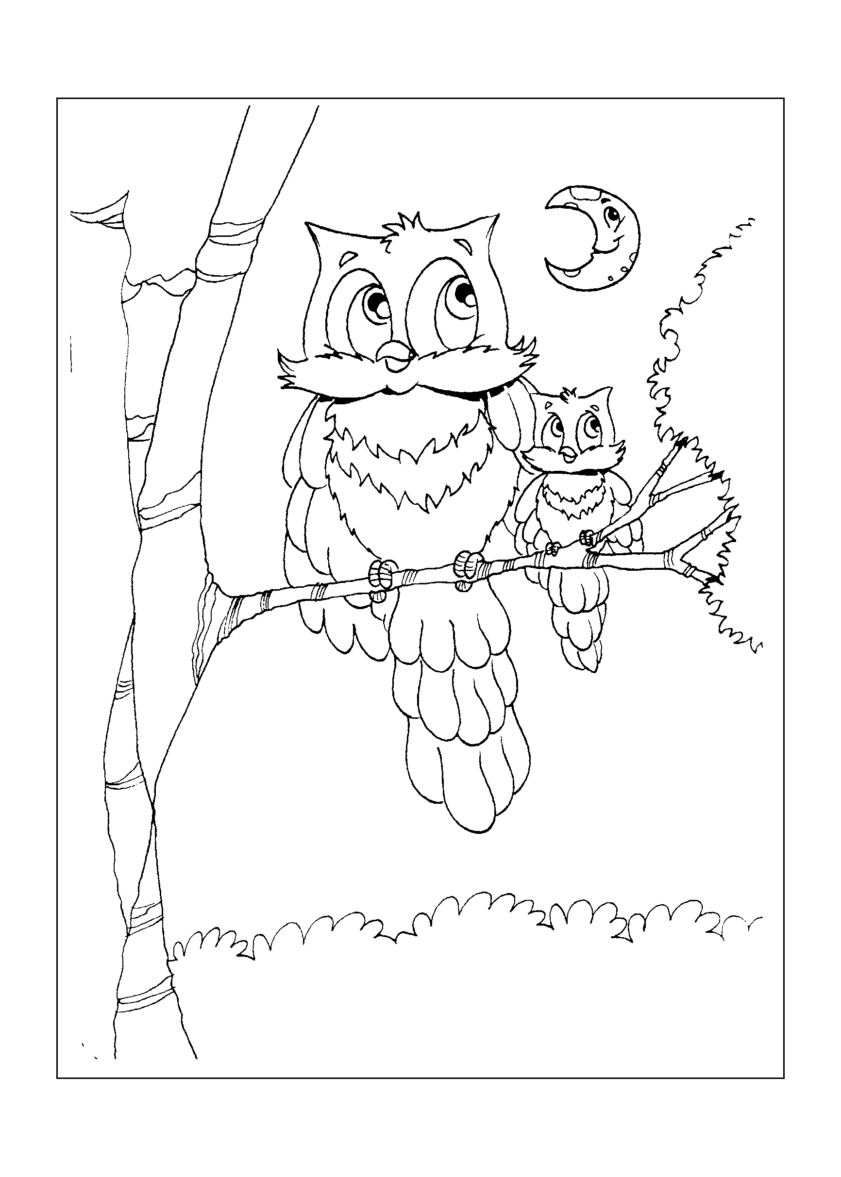 0166-desenho-colorir-coruja