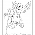 Desenhos para imprimir e colorir de Beija-Flores