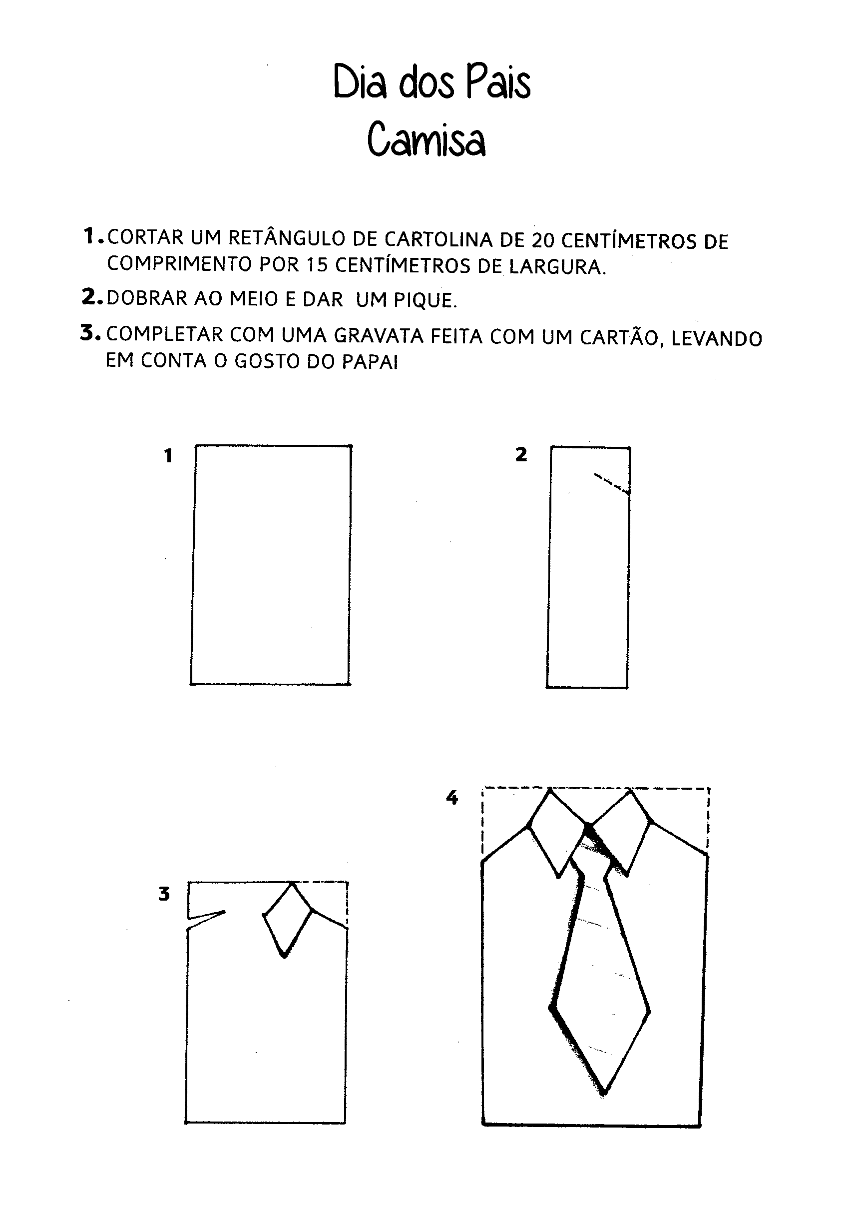 0219-dia-pais-camisa