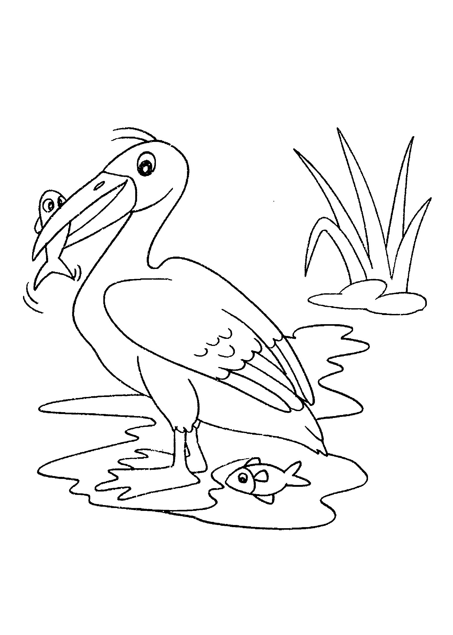 Desenho de ave se alimentado
