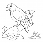 Desenhos de Aves para imprimir e colorir