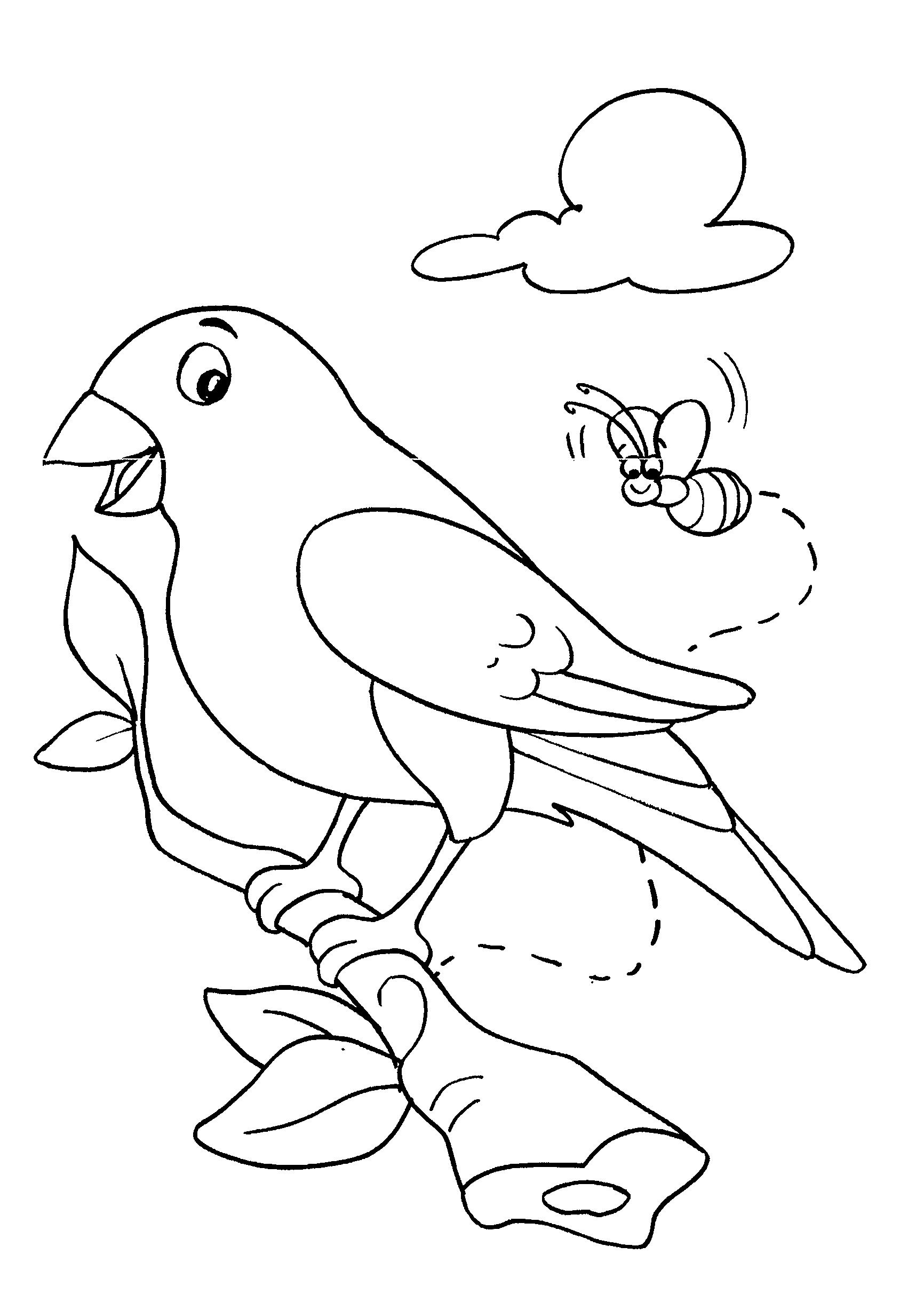 Desenho de passarinho