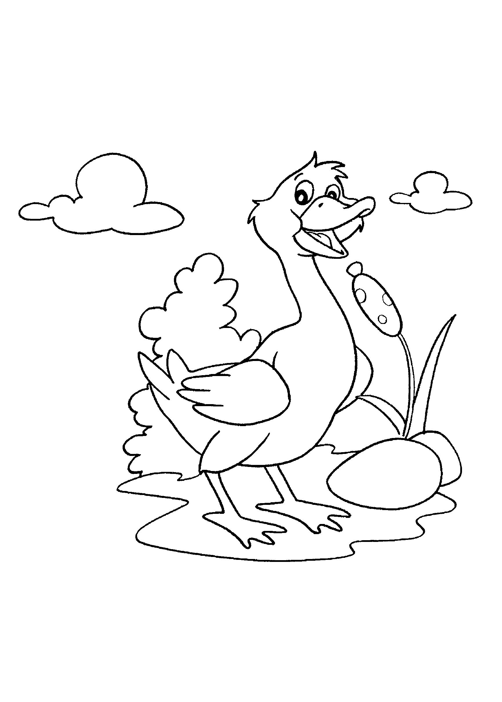 Desenho de pato adulto