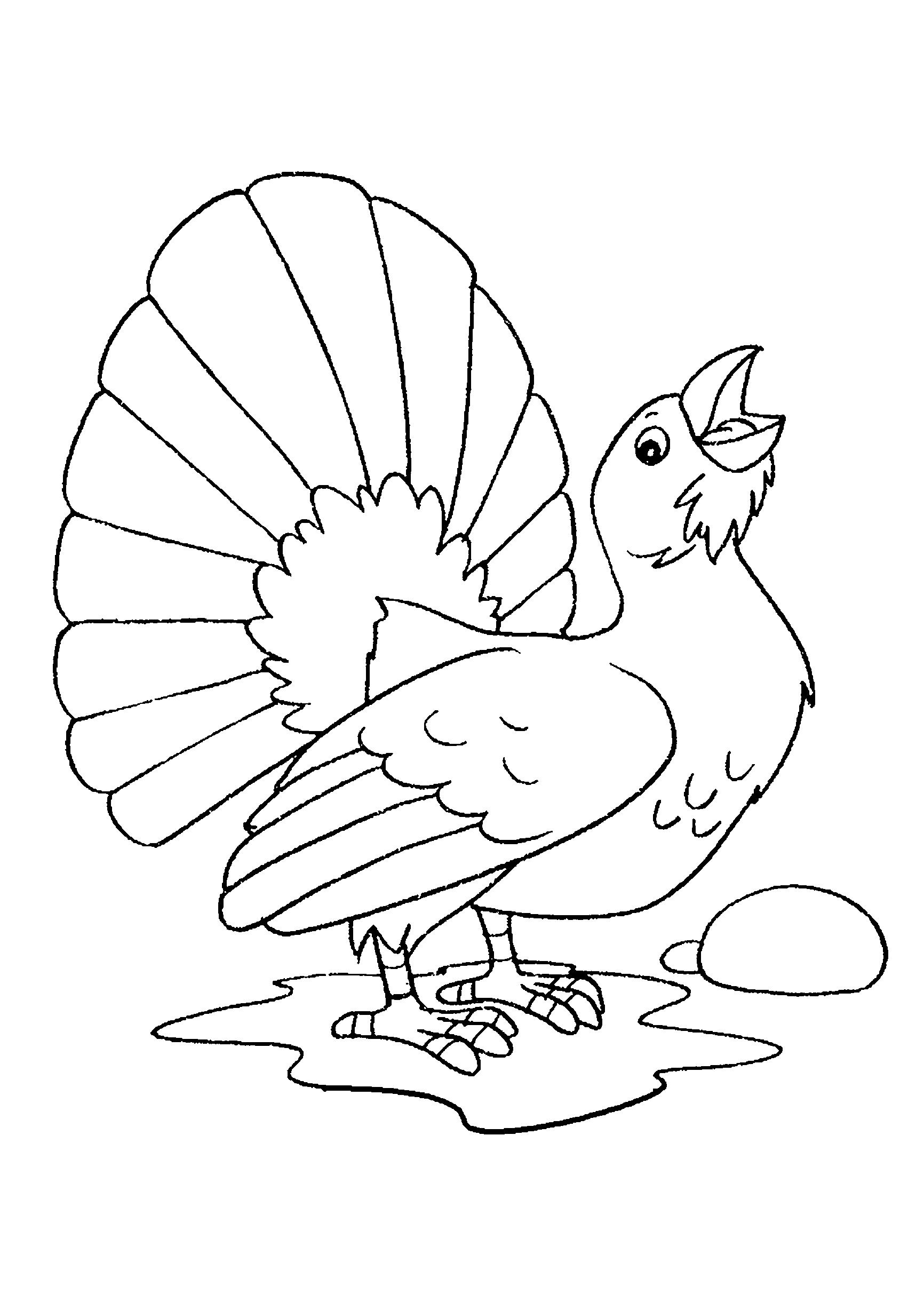 Desenho de pavão