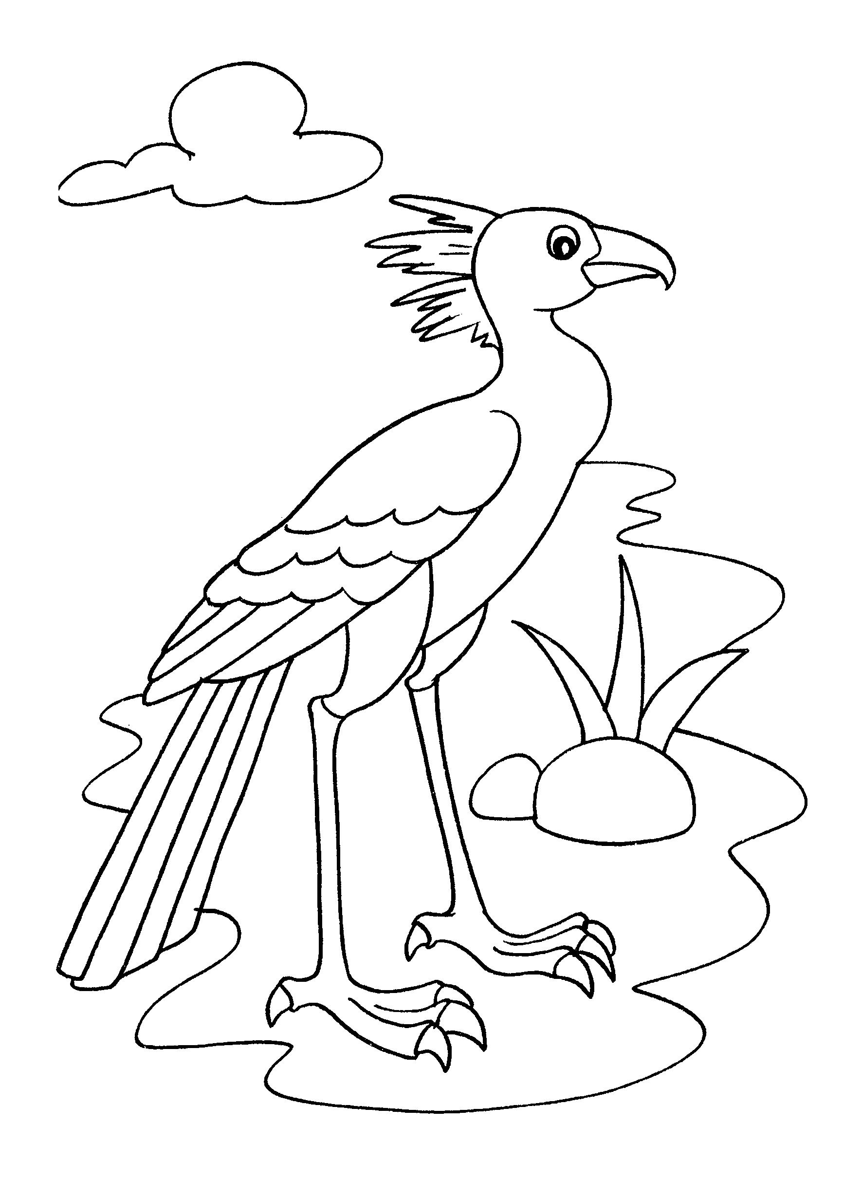 Desenho de ave