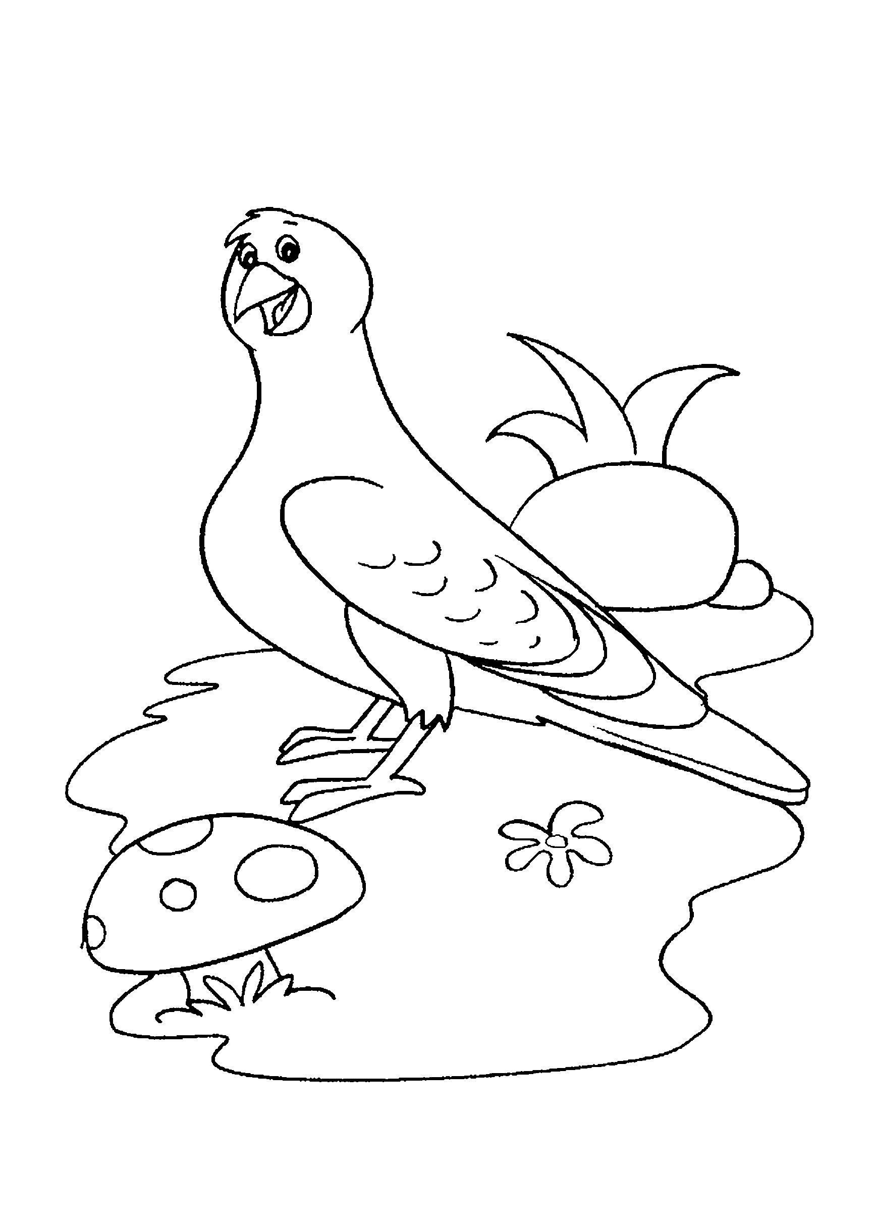 Desenho de pombo