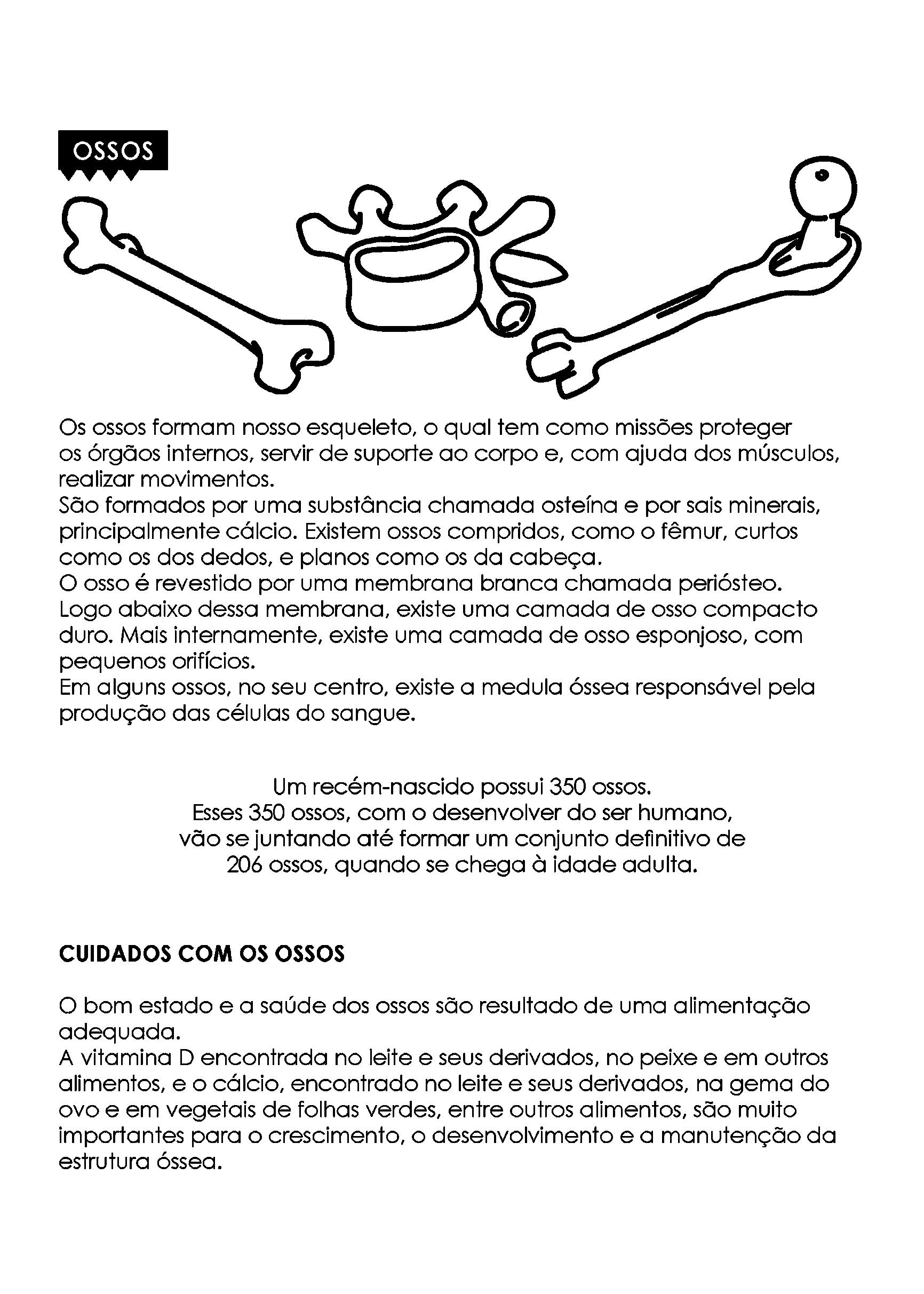 texto sobre os ossos do corpo humano