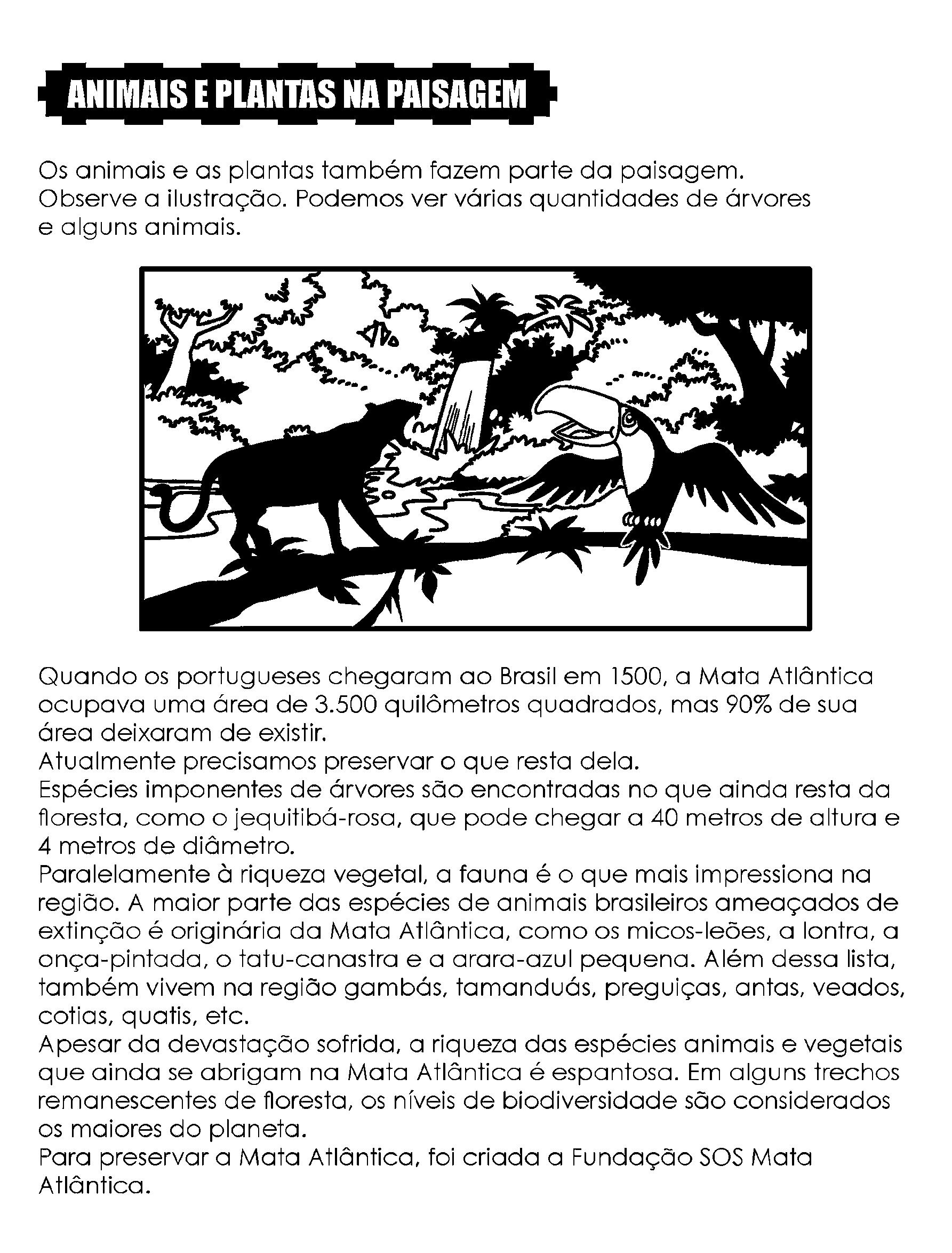 Texto Animais e Plantas na Paisagem