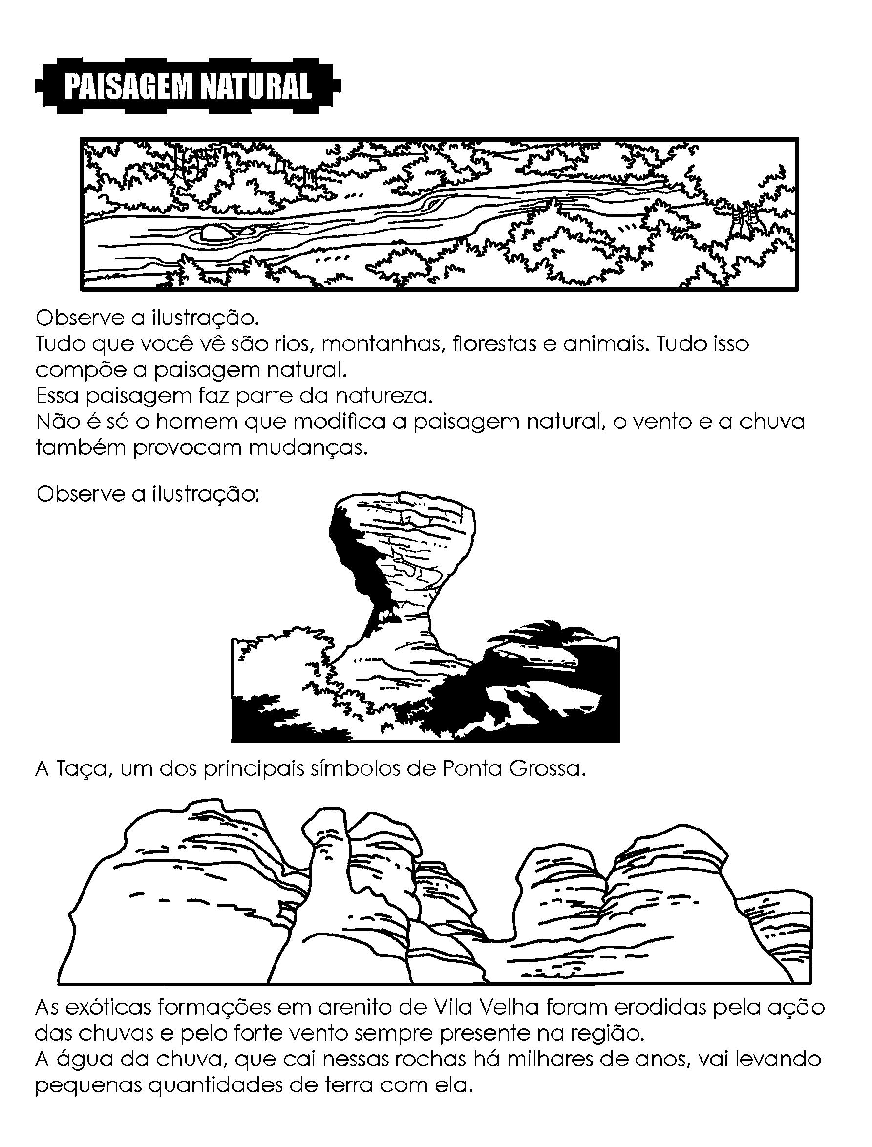 Paisagem Natural - Introdução