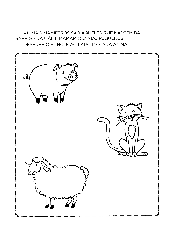 Desenhar o filhote de cada animal
