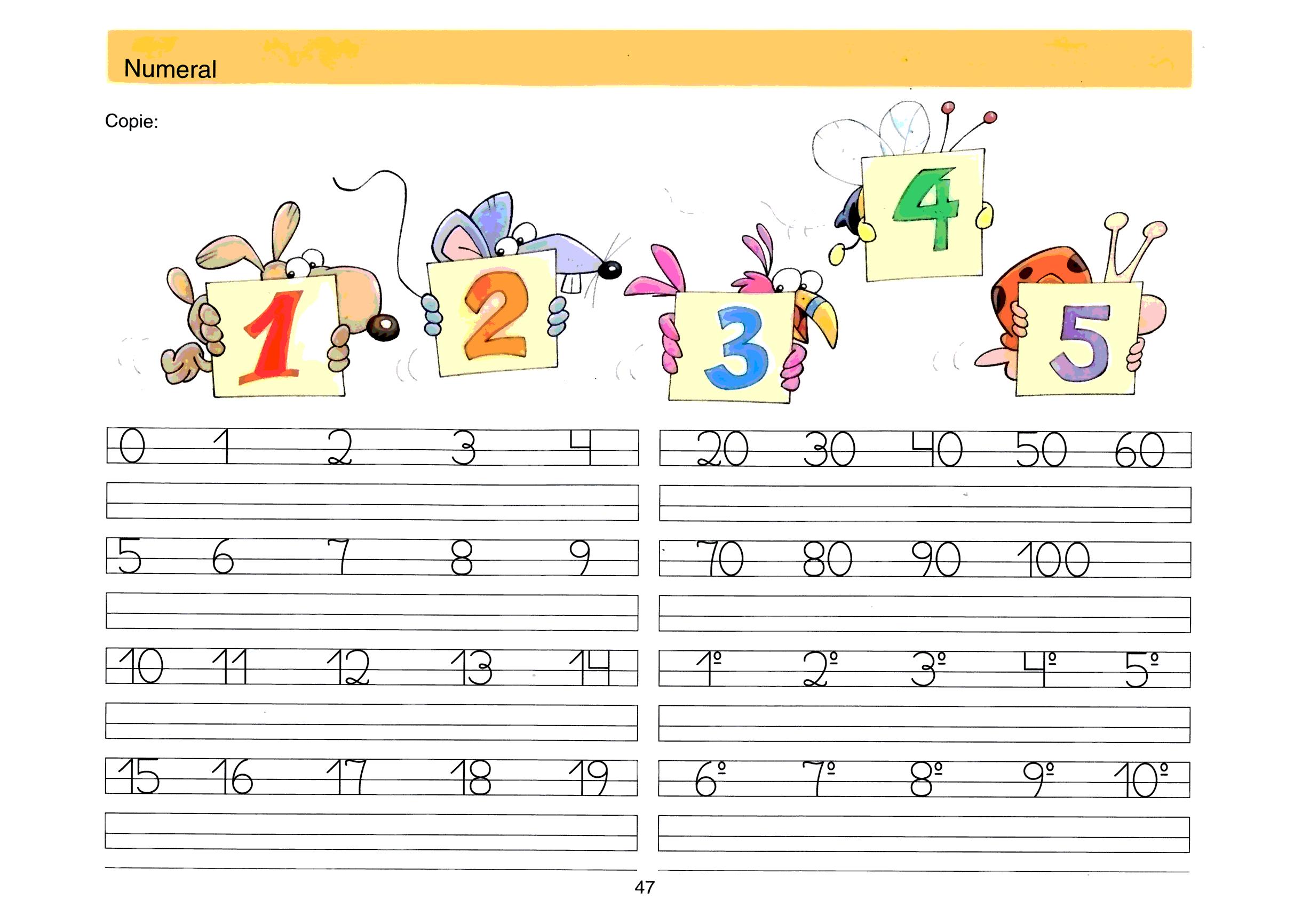 Caligrafia dos Numerais